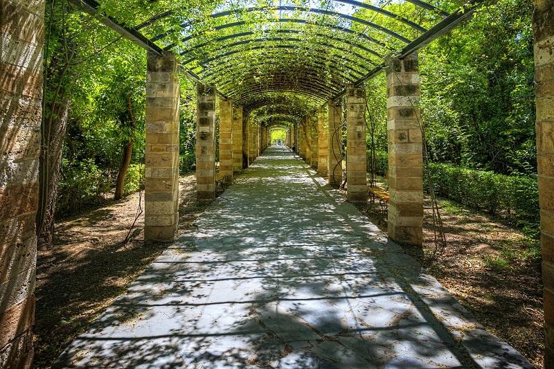 Jardim Botânico Diomidis